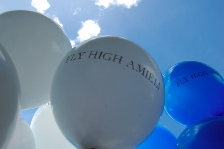 Fly High Amiel!