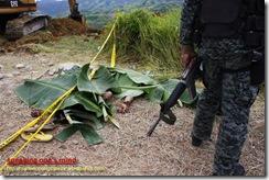 Maguindanao Massacre - 51