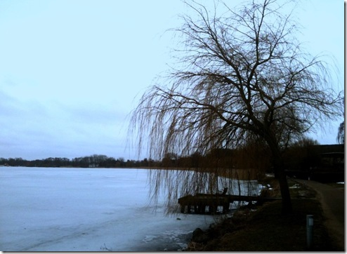 A view of the frozen lake...